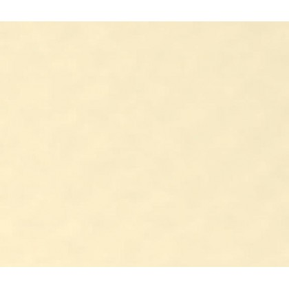 ALKORPLAN 2K Protiskluz - Sand, 1,65m šíře, 1,8mm, role 12,6m